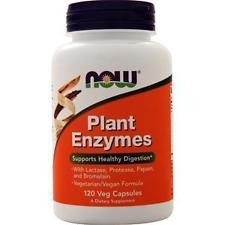 Now Plant Enzymes 120caps