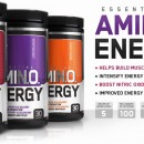 ON Essential Amino Energy 270g