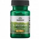 Swanson - Probiotics L. Plantarum (probiotic) - 30 capsule