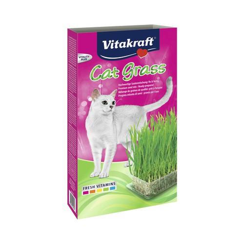 Iarba pisicii, Vitakraft, Seminte, 120 G