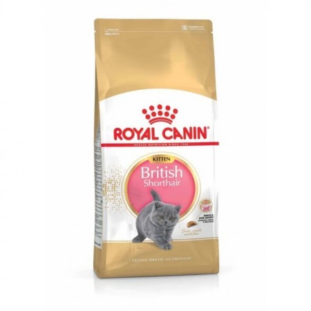 Royal Canin British Shorthair Kitten 2 Kg