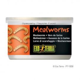 Hrana reptile, Exo Terra Mealworms 34G, PT1958