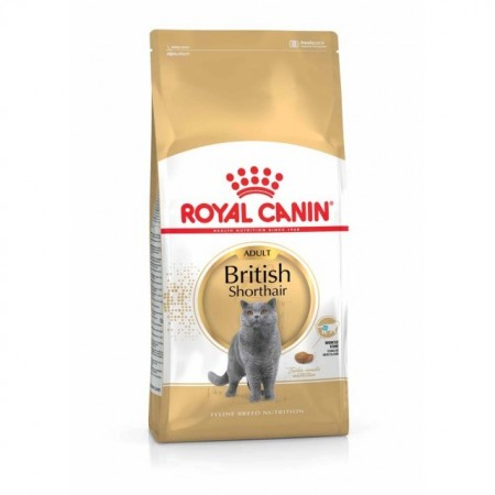 Royal Canin, British Shorthair, 10Kg