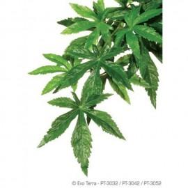 Plante terariu, Exo Terra, Abutilon M 55 CM, PT3042