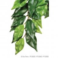 Plante pentru terariu, Exo Terra, Ficus Small 45 CM, PT3030