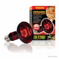 Bec pentru terariu, Exo Terra, Infrared Heat Glo 100W, PT2144