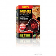 Bec pentru terariu, Exo Terra, Infrared Basking Spot R20 / 50W, PT2141