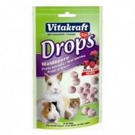 Drops pentru rozatoare, Vitakraft Fructe de Padure 75 G