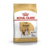 Hrana uscata pentru caini, Royal Canin, Beagle Adult, 3 Kg