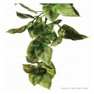 Plante pentru terariu, Exo Terra, Ampallo, Large 70CM, PT3021