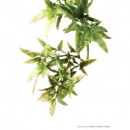 Plante terariu, Exo Terra, Croton Large 70CM, PT3020