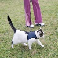 Ham cu lesa pentru pisici, Ferplast, Jogging XL