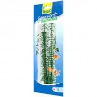 Plante pentru acvarii, Tetra, Deco Art Anacharis, M 23CM
