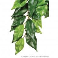 Plante terariu, Exo Terra, Silk Plant Ficus Large PT3050