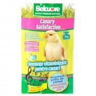 Vitamine pentru pasari, Belcuore,Canari Pentru Cantec, 20 g