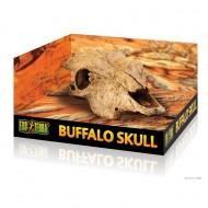 Decor terariu, Exo Terra, Buffalo Skull PT2857