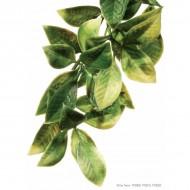 Plante pentru terariu, Exo Terra, Mandarin, Large 70CM, PT3022