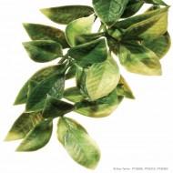 Plante pentru terariu, Exo Terra, Mandarin, Small 45CM, PT3002