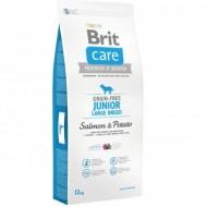 Hrana uscata pentru caini, Brit Care, Grain-free Junior Large Breed Salmon and Potato, 12 kg