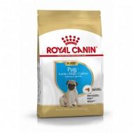 Hrana uscata pentru caini, Royal Canin, Pug Junior, 1,5 kg