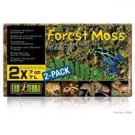 Asternut reptile, Exo Terra, Forest Moss PT3095, 2x7L