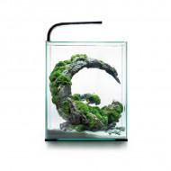 Aquael Shrimp Smart Day & Night