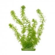 Plante acvariu, Hagen Marina Hornworth, 37,5 cm, PP1512