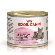 Hrana umeda pentru pisici, Royal Canin, Babycat Instinctive, 195 g