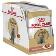 Hrana umeda pentru pisici, Royal Canin, British Shorthair Pouch, 12X85 g