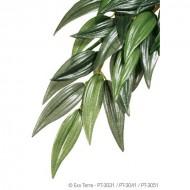 Plante terariu, Exo Terra, Silk Plant Ruscus Medium, PT3041