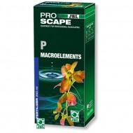 Fertilizator plante acvariu, JBL, ProScape P Macroelements 250ml