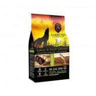 Hrana uscata pentru caini, Ambrosia Grain Free, Senior Light Sterilised, Curcan si Somon, 12 Kg