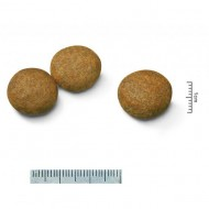 Hrana uscata pentru caini, Royal Canin, Medium Adult, 15 Kg