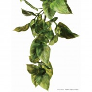 Plante pentru terariu, Exo Terra, Ampallo, Small 32CM, PT3001