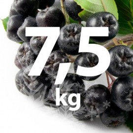 Poze Fructe Congelate Aronia 7,5 kg (bio)