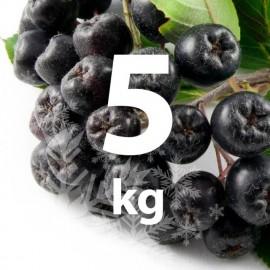 Fructe Congelate Aronia 5 kg (bio)