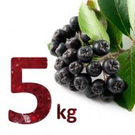 Fructe Proaspete Aronia 5 kg (bio)