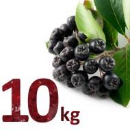 Fructe Proaspete Aronia 10kg (bio)