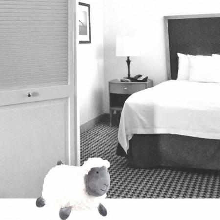 Opritor usa textil Pufo, model Oaia visatoare Kitty