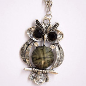 Colier lung cu pandantiv bufnita, model Bright owl, argintiu
