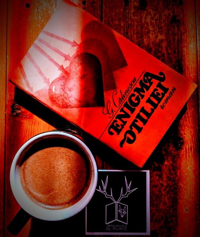 Cafea și enigme ale Otiliei