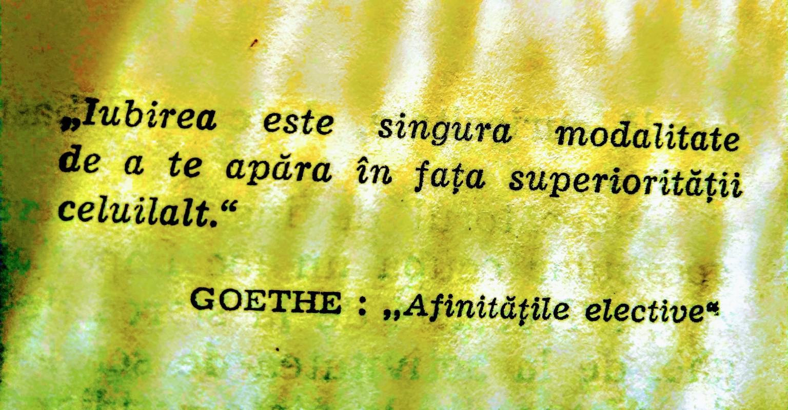 Goethe se năștea acum 270 de ani