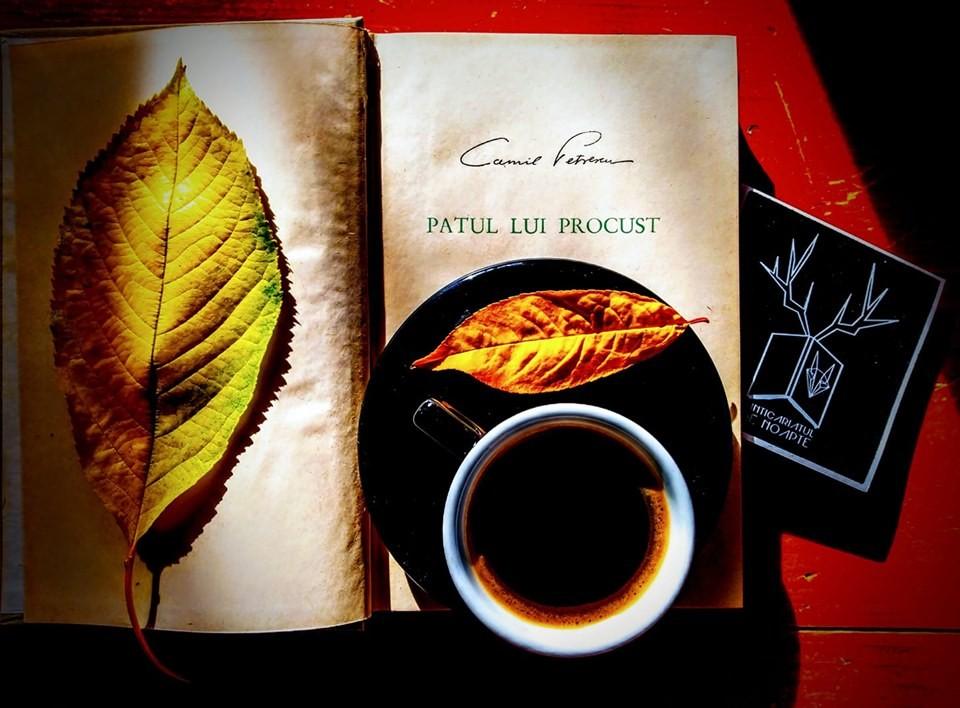 Cărțile lui Camil Petrescu pentru zilele frumoase de octombrie