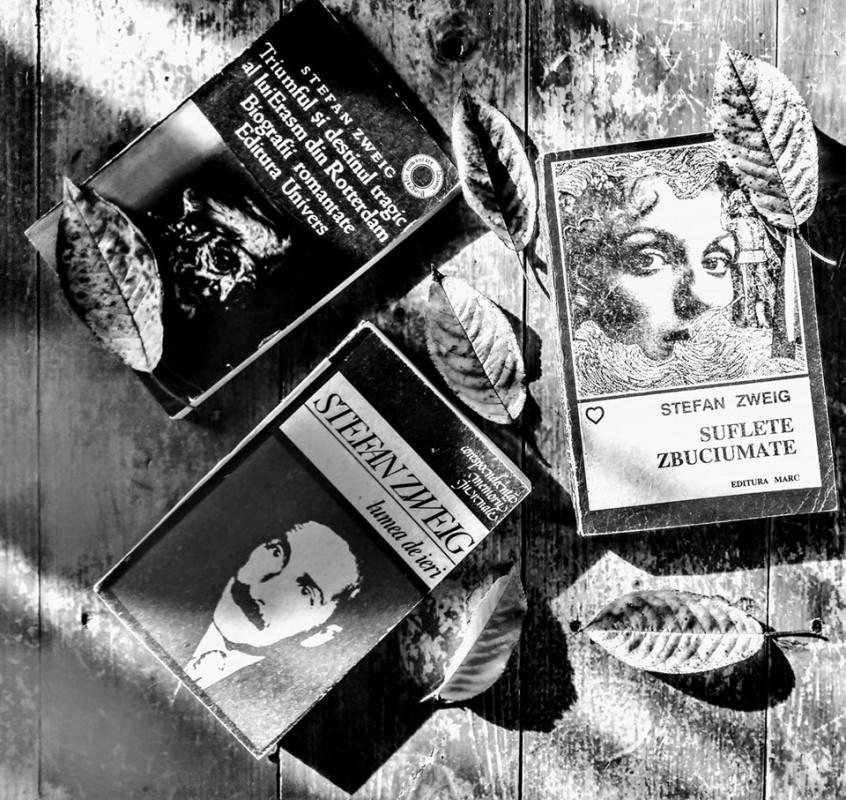 Azi îl sărbătorim pe scriitorul austriac Stefan Zweig!