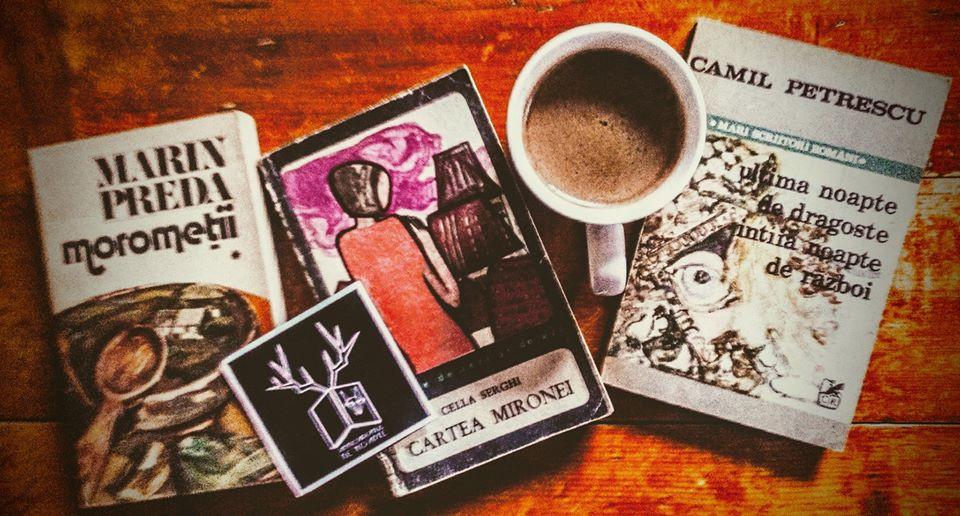Incursiune primăvăratică în literatura română
