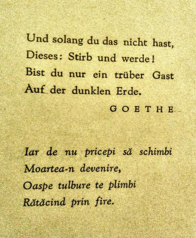 Despre Goethe într-o zi ploioasă