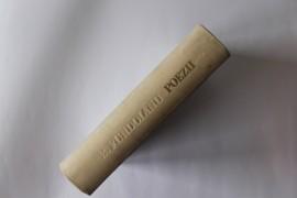B. Fundoianu - Poezii (editie hardcover)