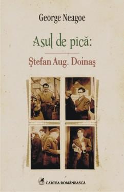George Neagoe - Asul de pica: Stefan Aug. Doinas