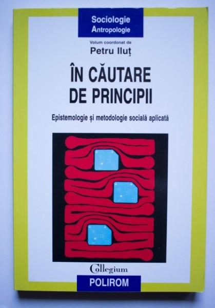 Petru Ilut - In cautare de principii. Epistemologie si metodologie sociala aplicata