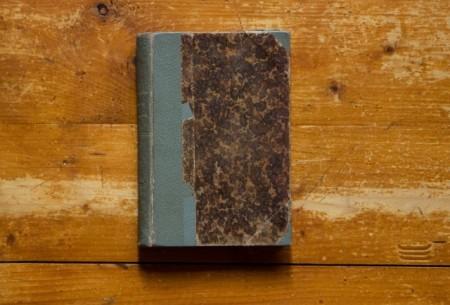 Bjornstjerne Bjornson - Veselul strengar (editie hardcover, antebelica, frumos relegata)